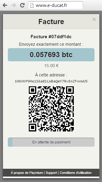 Step 5/5 - Bitcoin Payment page